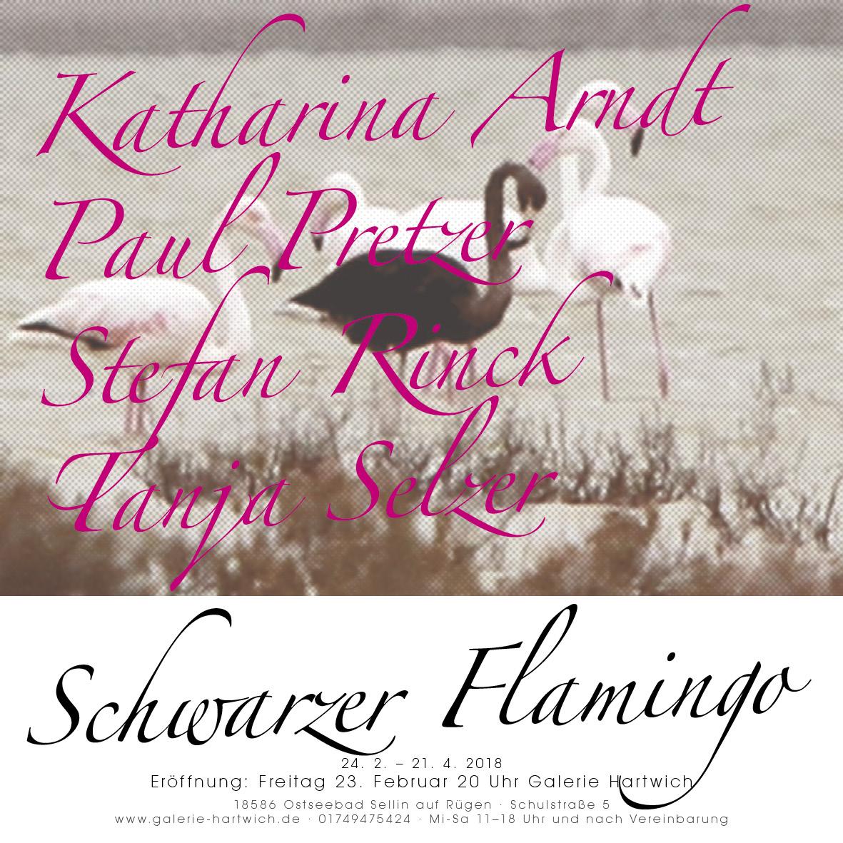 Katharina Arndt Schwarzer Flamingo mit Stefan Rinck, Paul Pretzer, Tanja Selzer